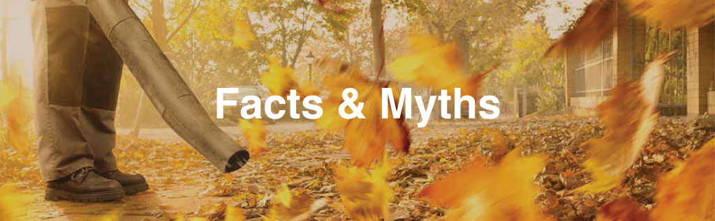 Facts & Myths