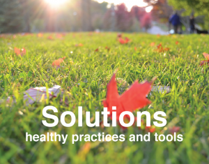 Solutions healthy yard care practices and alternatives