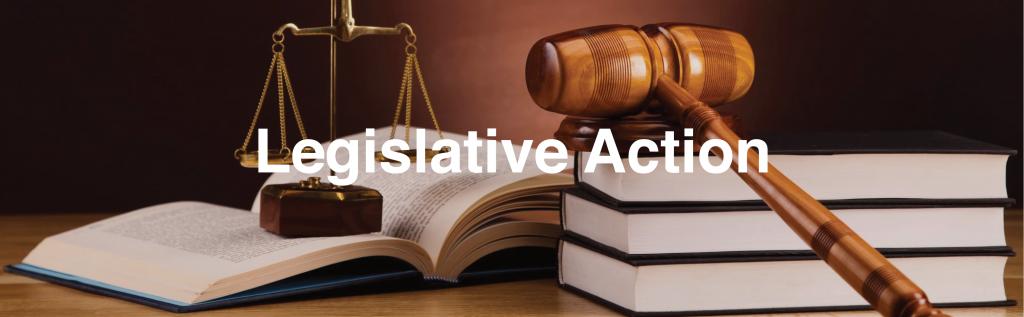 legislative action to eliminate gas powered leaf blowers